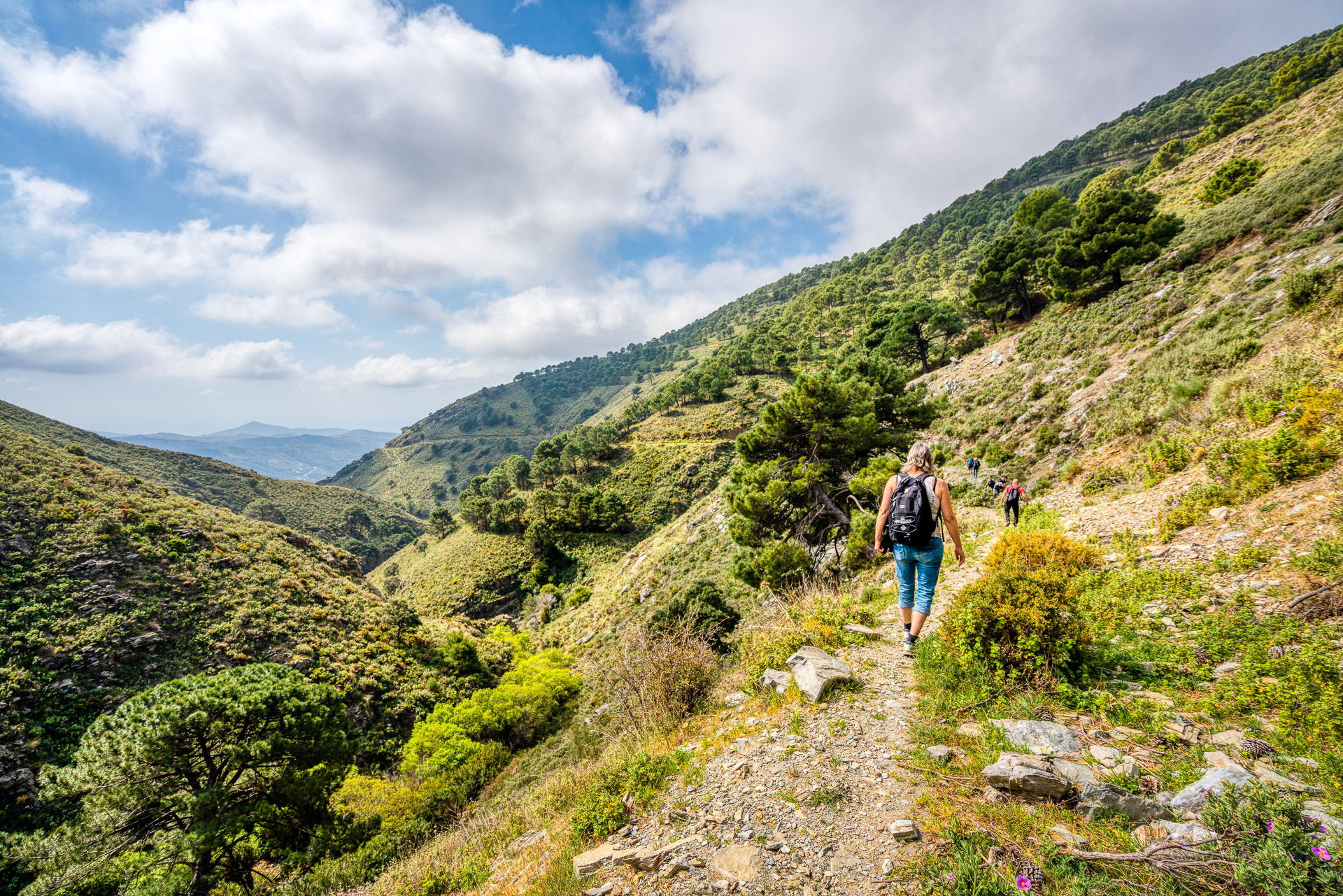 Mountain landscape in Andalucia, Spain.  Tags: Andalucia, Spain, Malaga, mountain, hiking, landscape